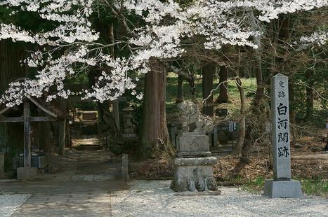 16041604shirakawajinja