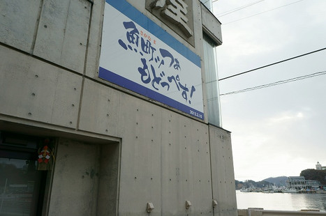 16123113sakanamchi